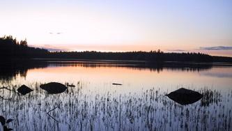 Kulturmöte i Mossviken